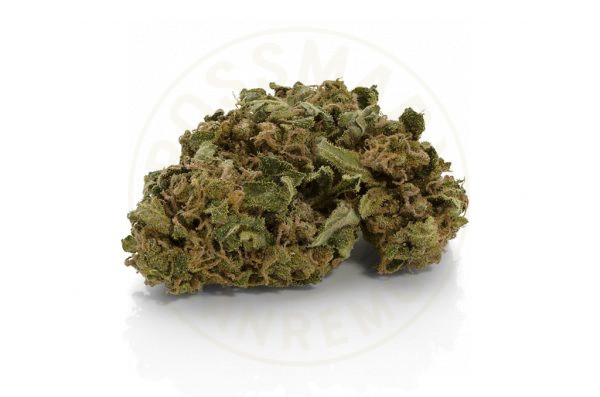 New York Skunk